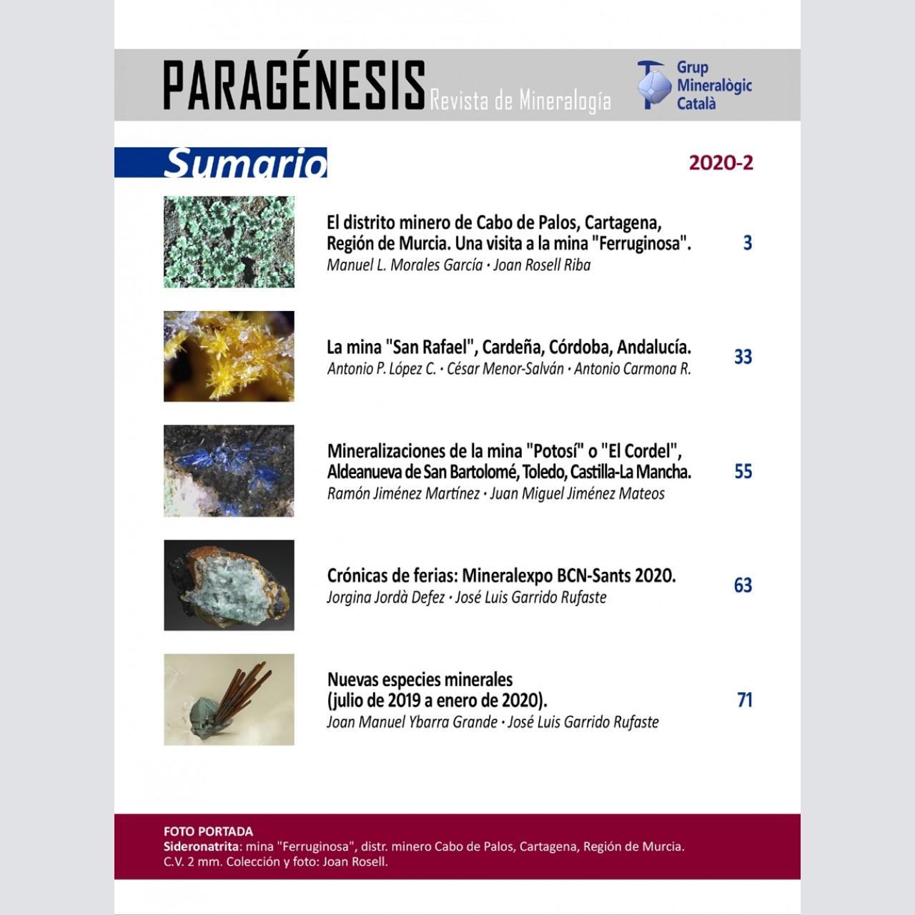 <em>Paragénesis</em> (2020-2)
