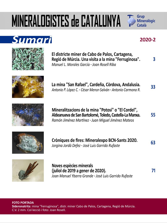 <em>Paragénesis</em> (2020-2) - Sumario